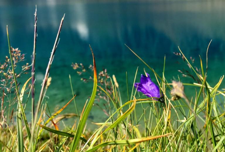 15 Blaue Lacke Bergsee Stubai